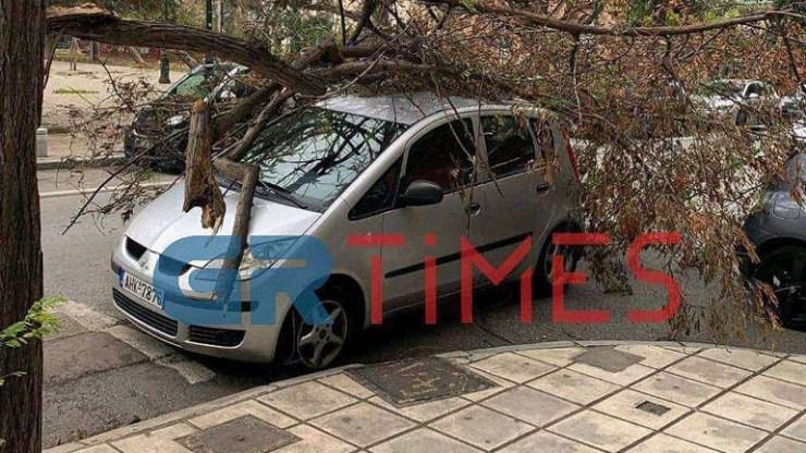 Δέντρα καταπλάκωσαν αυτοκίνητα στο κέντρο της Θεσσαλονίκης