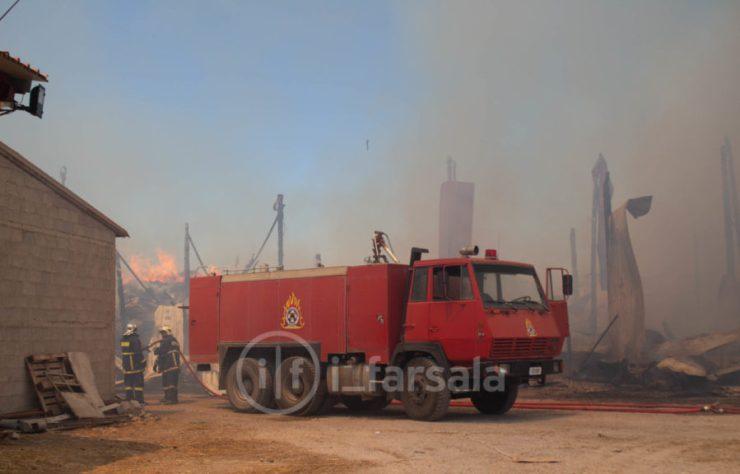 Κάηκαν 400 πρόβατα σε πυρκαγιά σε κτηνοτροφική μονάδα έξω από τα Φάρσαλα! (φωτό)