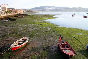 Una marea baja en Combarro (Pontevedra). Crédito: Mario Modesto