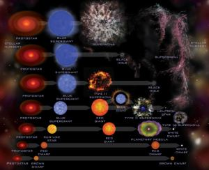 En esta imagen puedes ver la fase evolutiva de las estrellas según su masa. Crédito: NASA/CXC/SAO