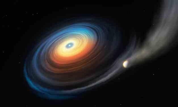 Hallan un planeta gigante alrededor de una enana blanca