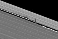 Daphnis en golven in de ringen