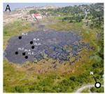 Microbacteriën ontdekt in asfaltmeer in Trinidad