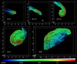 Komende passage gaswolk G2 langs centrale zwart gat Melkweg gesimuleerd