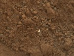 Witte stukjes in bodem zijn niet van Curiosity, maar van Mars zelf