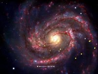 De supernova die in 1979 in M100 verscheen