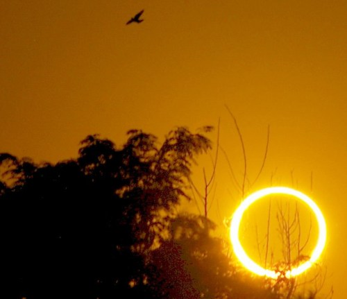 Ring of Fire Roswell