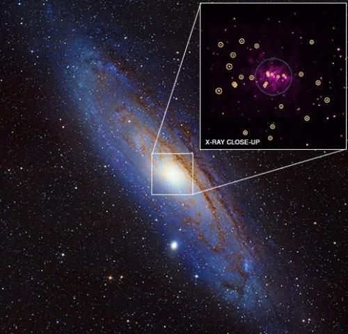 Chandra heeft 26 stellaire zwarte gaten ontdekt in het Andromedastelsel, M31.