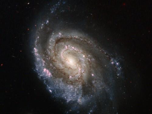 SN NGC 6984