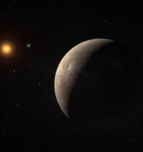 De locatie van Proxima Centauri in de zuidelijke sterrenhemel.