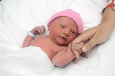 Introducing Jocelyn!
