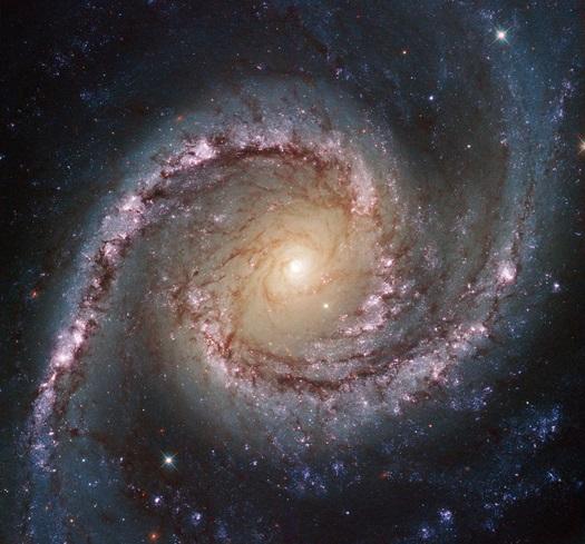 NGC_1566
