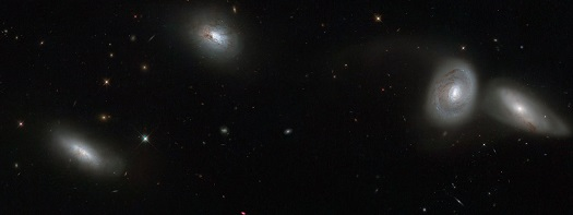 This new NASA/ESA Hubble Space Telescope image shows four of the seven members of galaxy group HCG 16. This quartet is composed of (from left to right) NGC 839, NGC 838, NGC 835, and NGC 833 — four of the seven galaxies that make up the entire group. They shine brightly with their glowing golden centres and wispy tails of gas, set against a background dotted with much more distant galaxies. This new image uses observations from Hubble's Wide Field Planetary Camera 2 combined with data from the ESO Multi-Mode Instrument, installed on the European Southern Observatory's New Technology Telescope in Chile.