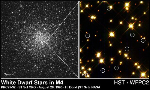 white dwarfs in a globular cluster