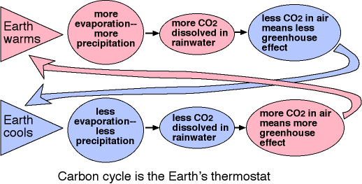 carbon cycle is the Earth's thermostat