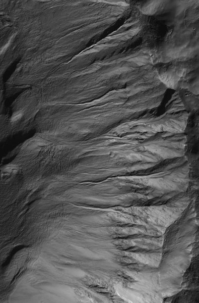 Gullies in the side of Newton Crater on Mars