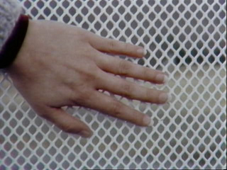 hand for scale of metal mesh