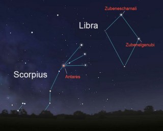 Scorpius: The Scorpion