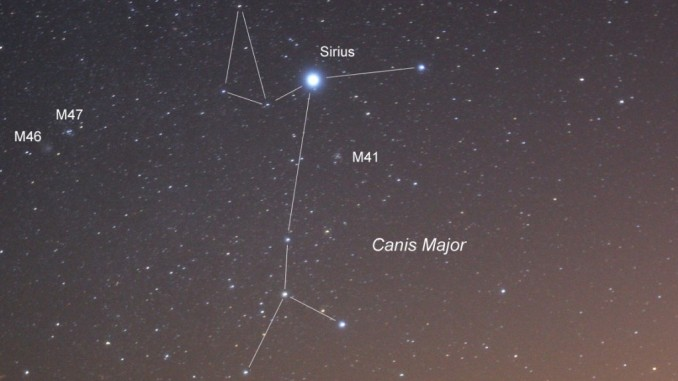 Image result for sirius canis major
