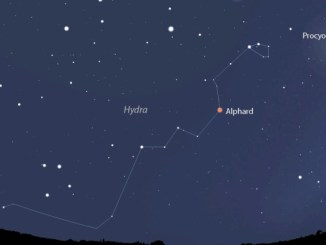 Hydra, the Night Sky's Largest Constellation