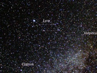 Star Constellation Facts: Lyra