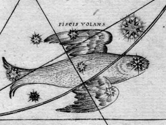 Star Constellation Facts: Volans