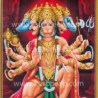 Panchamukhi Hanumanji available at Ebay