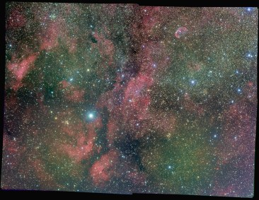 Steve Milne's multi-channel mosaic of the Sadr region in the constellation of Cygnus