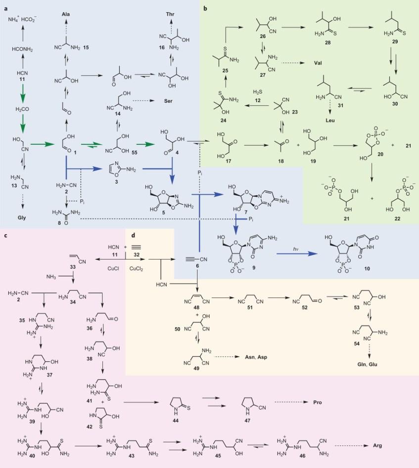 cascata_reacoes_quimicas_ARN_proteinas_lipidos_Patel_et_al_Marco2015