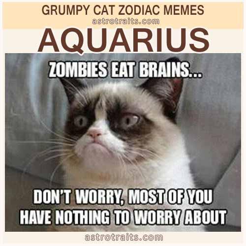 Aquarius Zodiac Meme - Grumpy Cat
