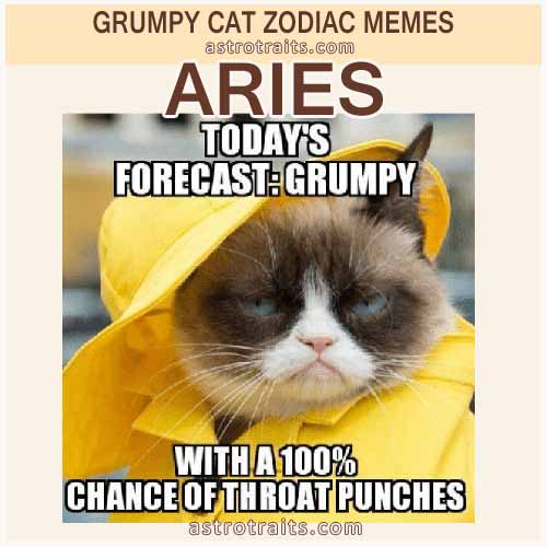 Aries Zodiac Sign Meme - Grumpy Cat