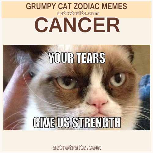 Cancer Zodiac Sign Meme - Grumpy Cat