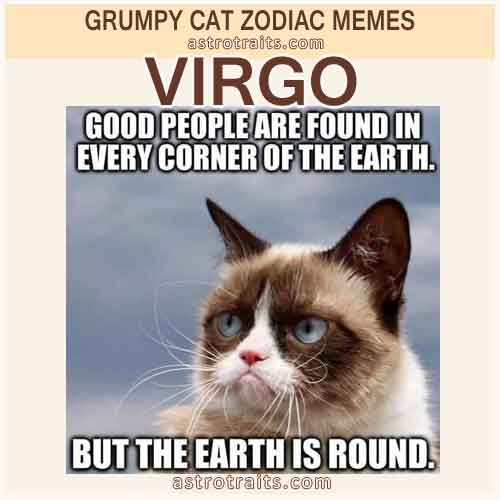 Virgo Meme 3 - Grumpy Cat
