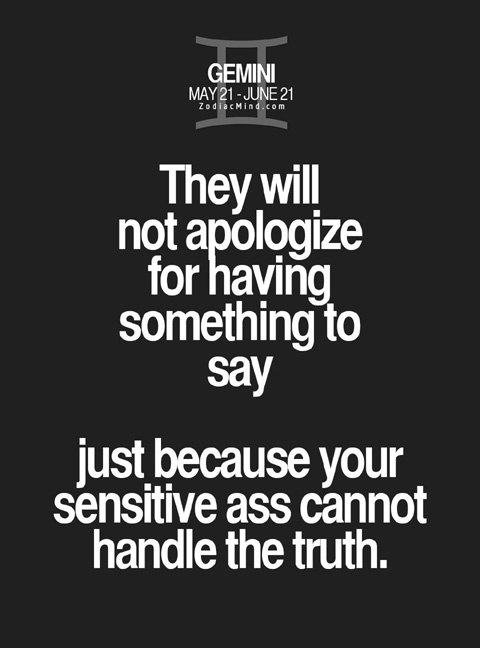 funny  gemini quotes 13 - apology