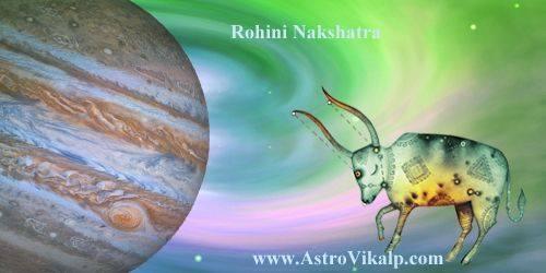 Rohini new