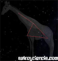 Figura de la constelación de la Jirafa