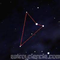 Figura de la constelación de la Mosca