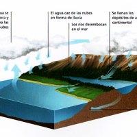 Gráfico del Ciclo del Agua