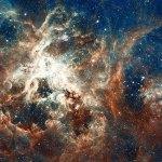 El Hubble capta el mayor «semillero de estrellas»