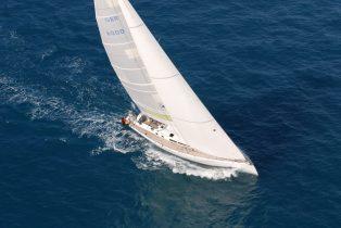 Walross 4 Luftaufnahme