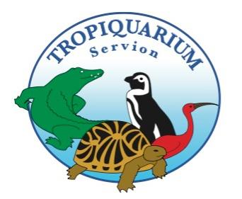 Projet de potager scout au Tropiquarium de Servion