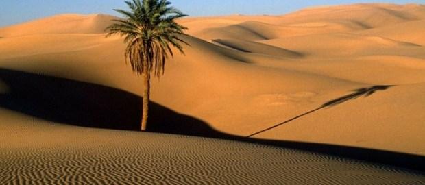 Mengapa Islam Berpijak dari Tanah Arab?