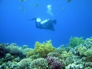 World's Most Dangerous Dive Spot- Blue Hole, Egypt