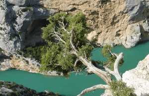 Verdon Gorge / Canyon Verdon– France