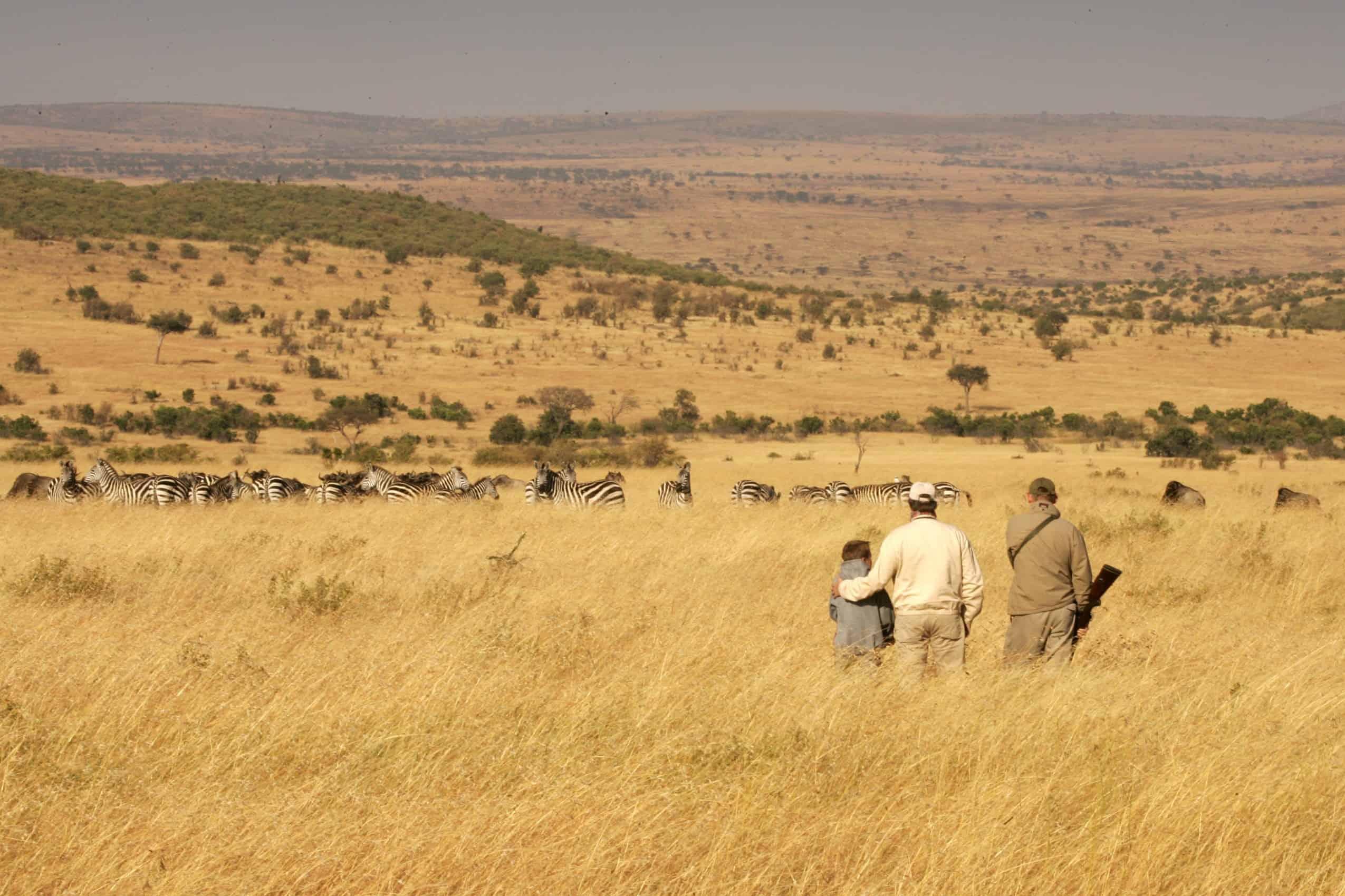 TOP BEST LUXURY SAFARI CAMPS IN AFRICA - 10 best safaris in africa