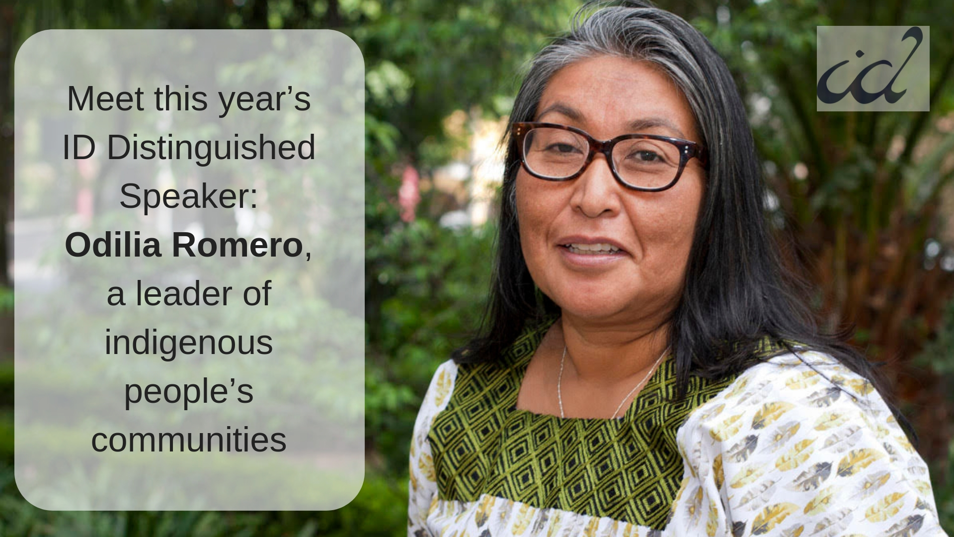 [Odilia Romero, a leader of indigenous people's communiies]