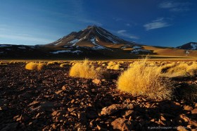 Volcano Miniques with Puna grass, Paja brava. Altiplano of Chile