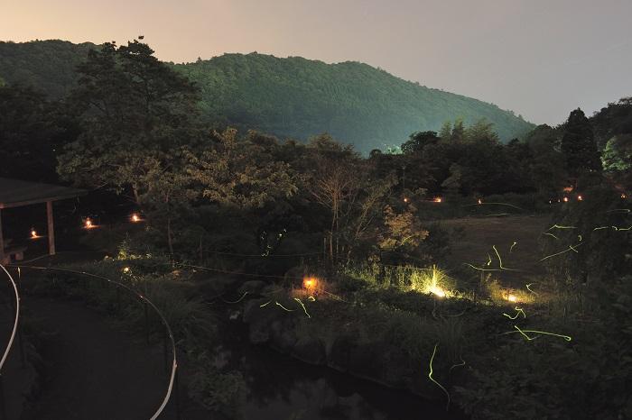 keyaki_park
