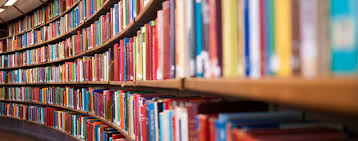 Shelf with many books