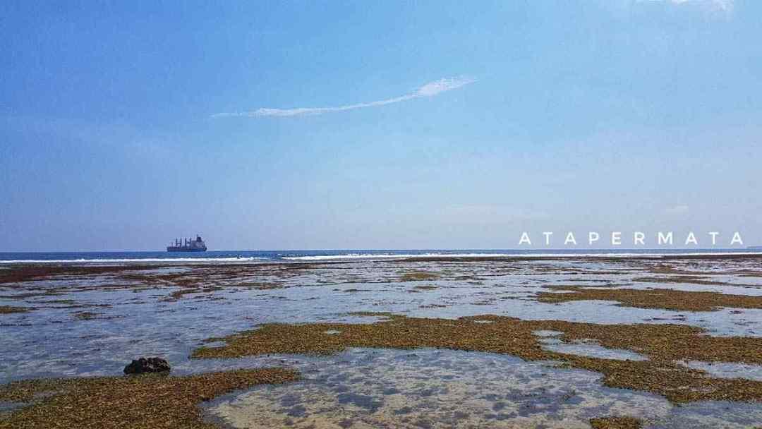 Pantai di Kaur (8)